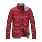 Winter Youth Self-Cultivation Down Jacket -5